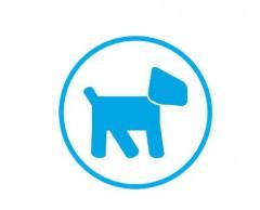 honden,hondenverzekering,kbc,bank,verzekering